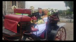 Fingal Wedding Carrige