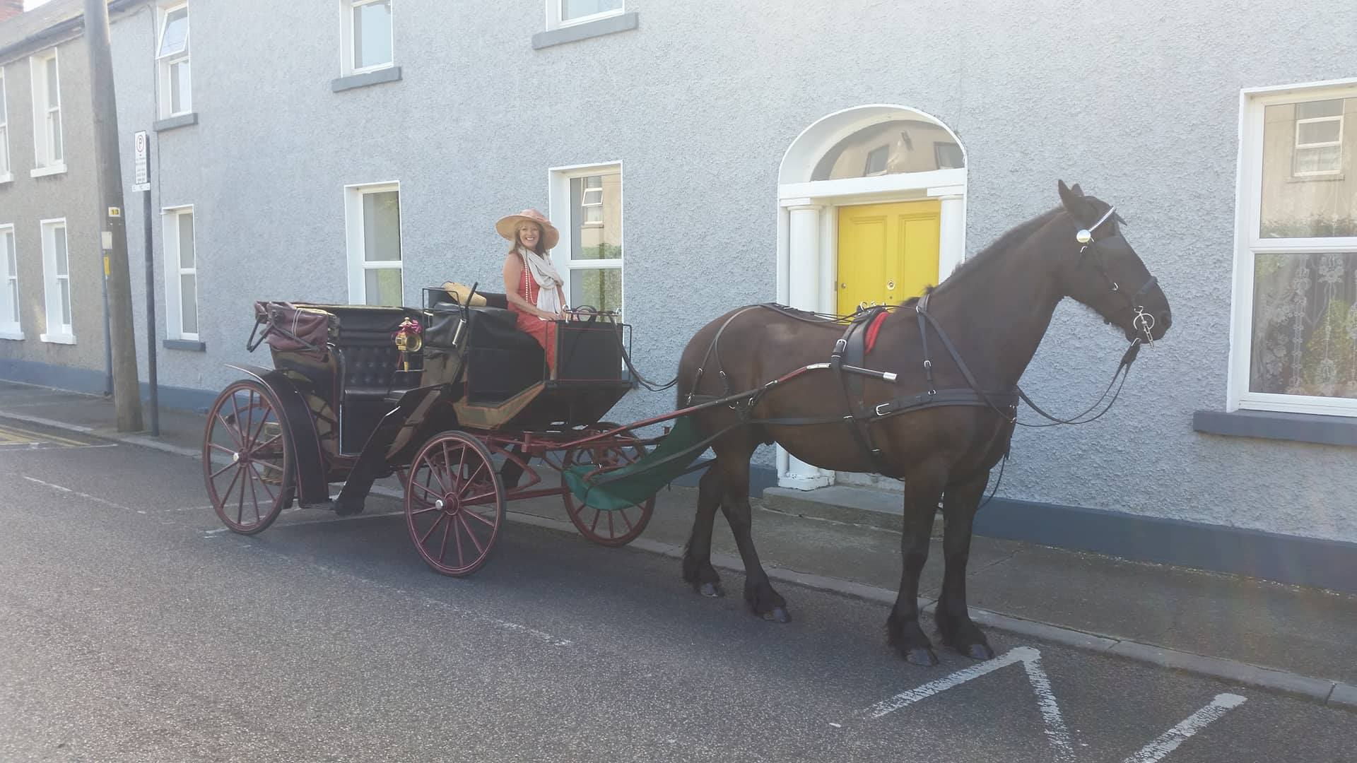 Horse & Carriage Fingal