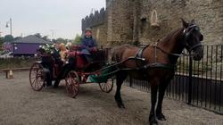 Wedding Carriage Fingal