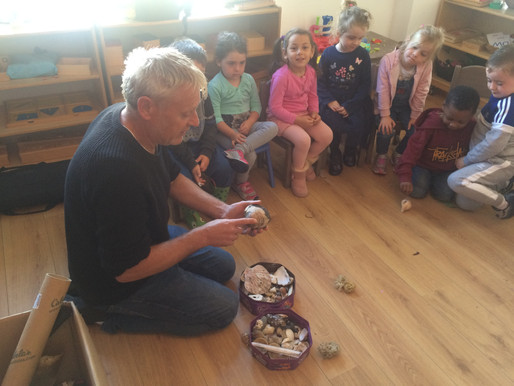 The Irish Seal Sanctuary at Market Green Montessori