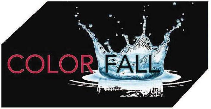 ColorFall logo (002).jpg
