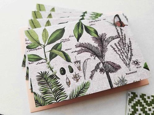 Flora & Fauna Little Mini Notecards