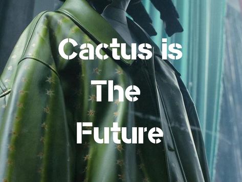 Cactus is The Future