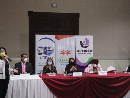 Alianza por los derechos de la niñez, adolescencia y juventud, presentó informe