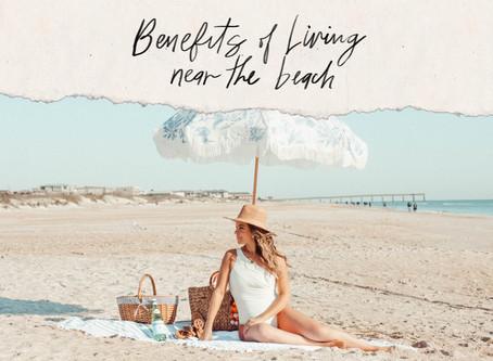 Beach Life: La vida al lado del mar