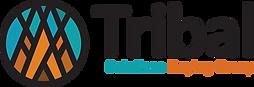 TSBG Logo tribal solutions.png
