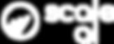 logo scale ai.png
