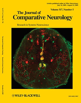 2009 Simo JCN cover.jpg