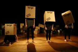 Stampede Ensemble - Cargo