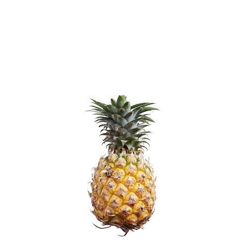 Ormoc Queen Pineapple 6 Pieces