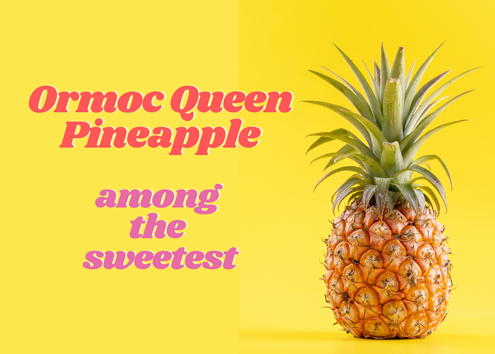 Queen Pineapple Among the Sweetest (2).p
