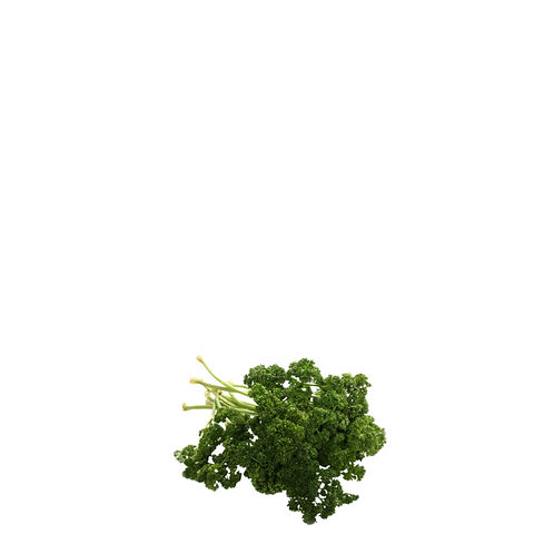 Parsley 100 Grams