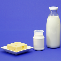 Dairy and Eggs Wix Cover.png