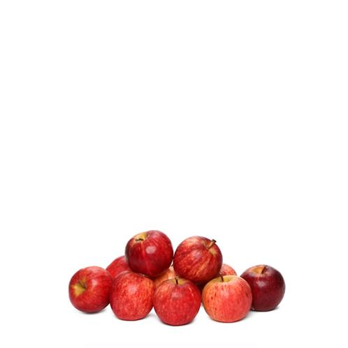 Gala Apple 10 Pieces