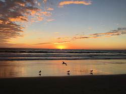Santa Monica Sunset Arends Photo 2018