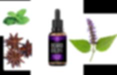 Beard Oil  IN THE ZONE Ingredients.png