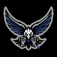 SouthForsythHS_Mascot.png