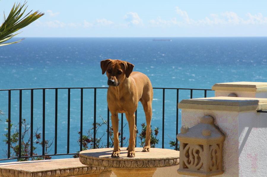 Spanien_2012_022.jpg