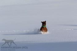 Maari Akinvoleezah Skiurlaub 2015 Januar Corvara 1.jpg