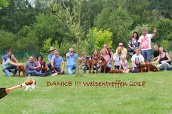 Welpentreffen 2018-2-002