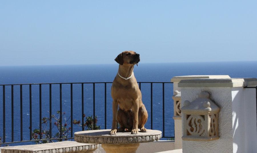 Spanien_2012_002.jpg