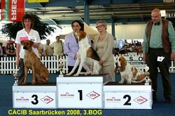 Ehrenring Plazierung SB 2008_.jpg