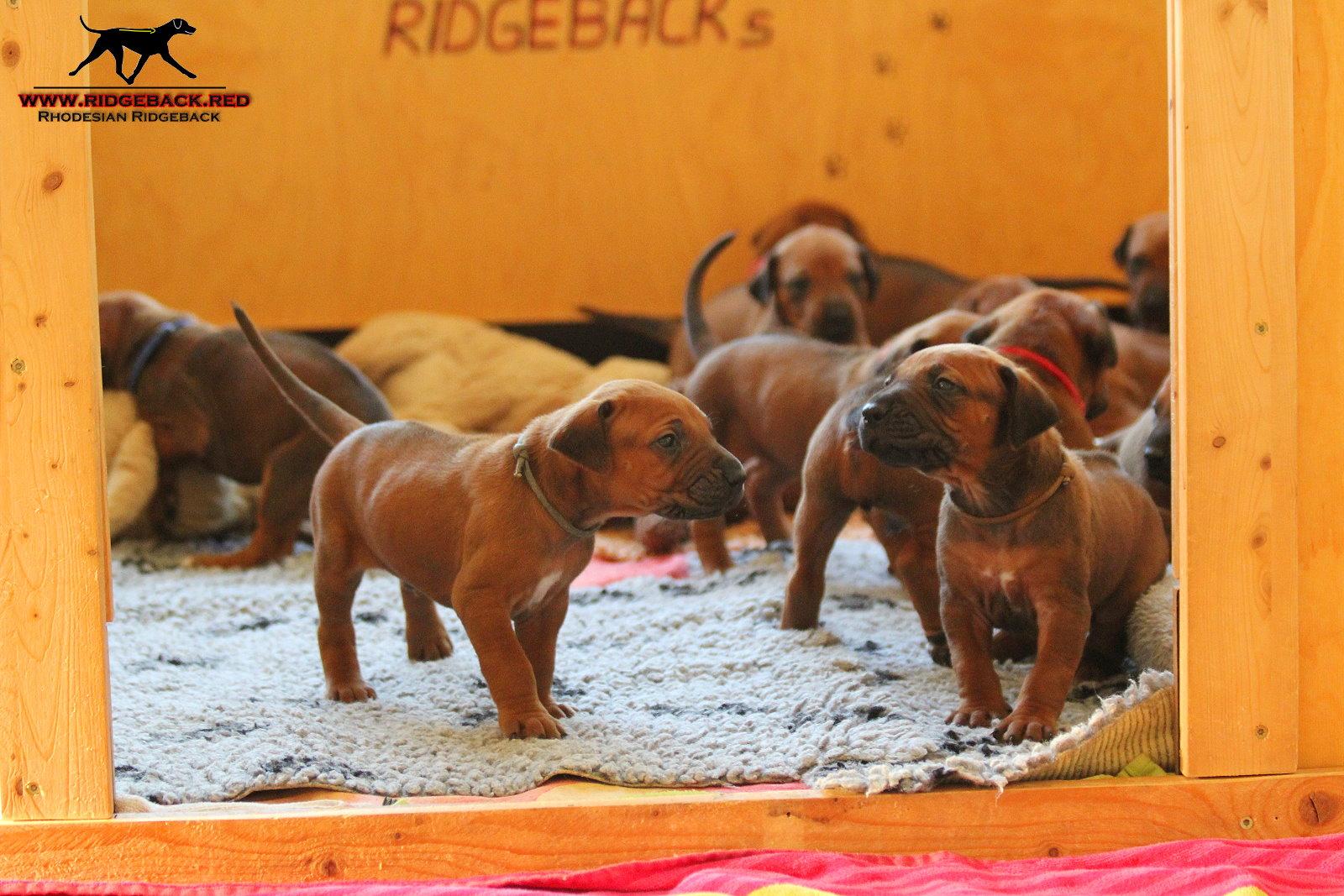 Jumay Babys 08.12.16_11