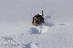 Maari Akinvoleezah Skiurlaub 2015 Januar Corvara 3.jpg