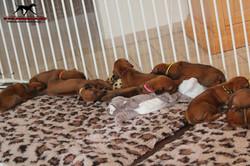 Jumay Babies 10.12.16_24