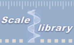 SCALE LIBRARY : Échelle d'évaluation clinique - Médecine Physique et de Réadaptation