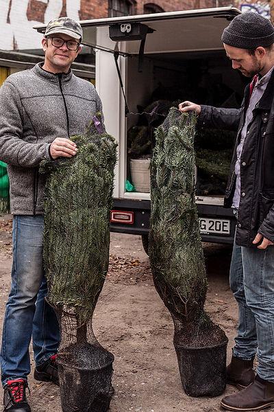 Weihnachtsbäume_Merry_Markthalle-7.jpg