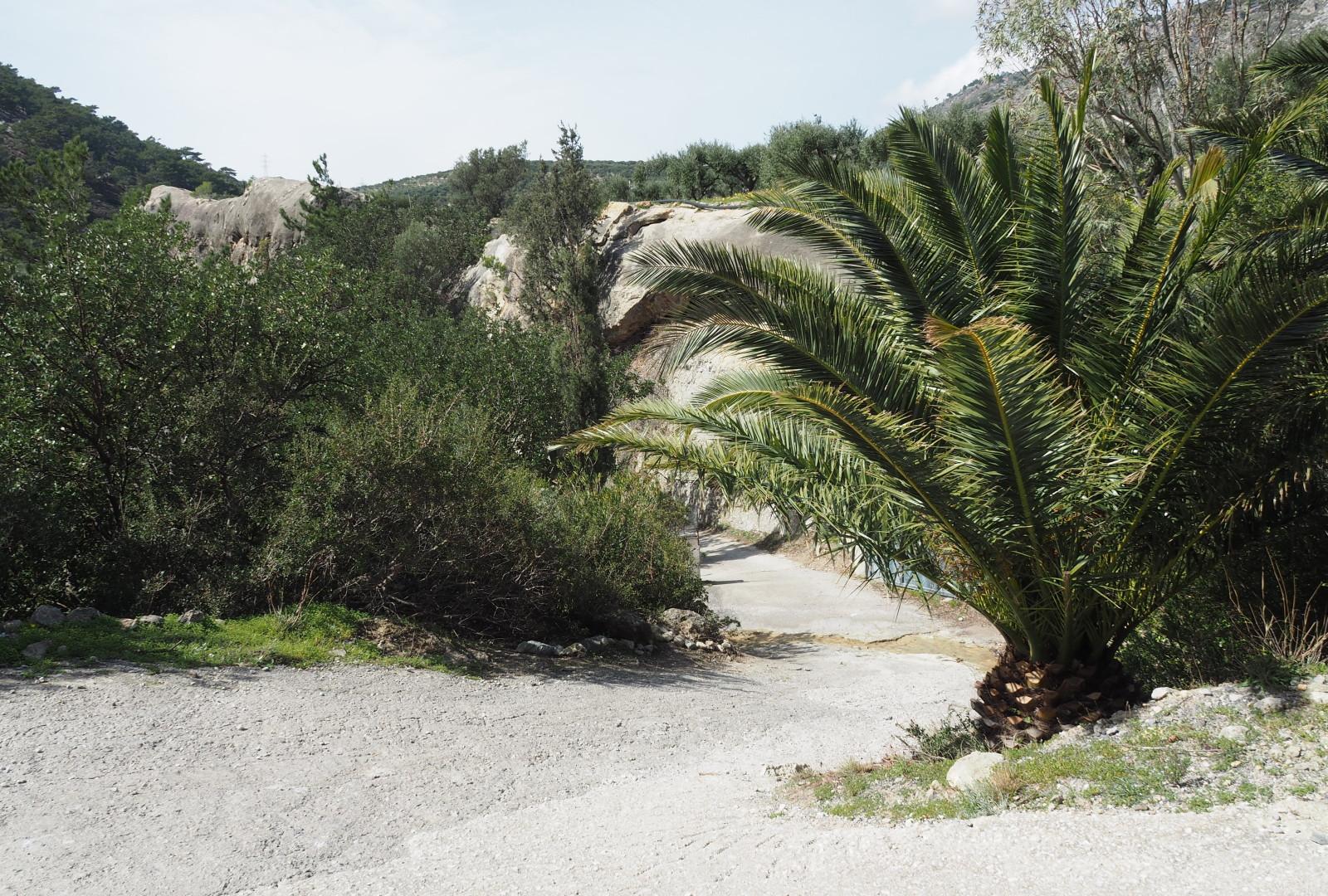 L'entrée, Kalyvitis, Crète