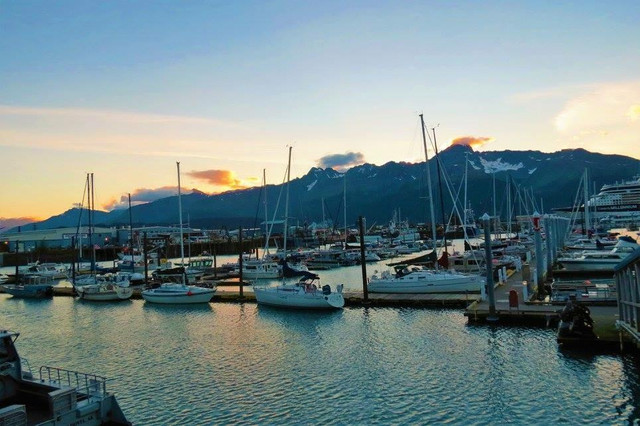 Deep Sea Fishing In Seward, Alaska - Puffin Charter