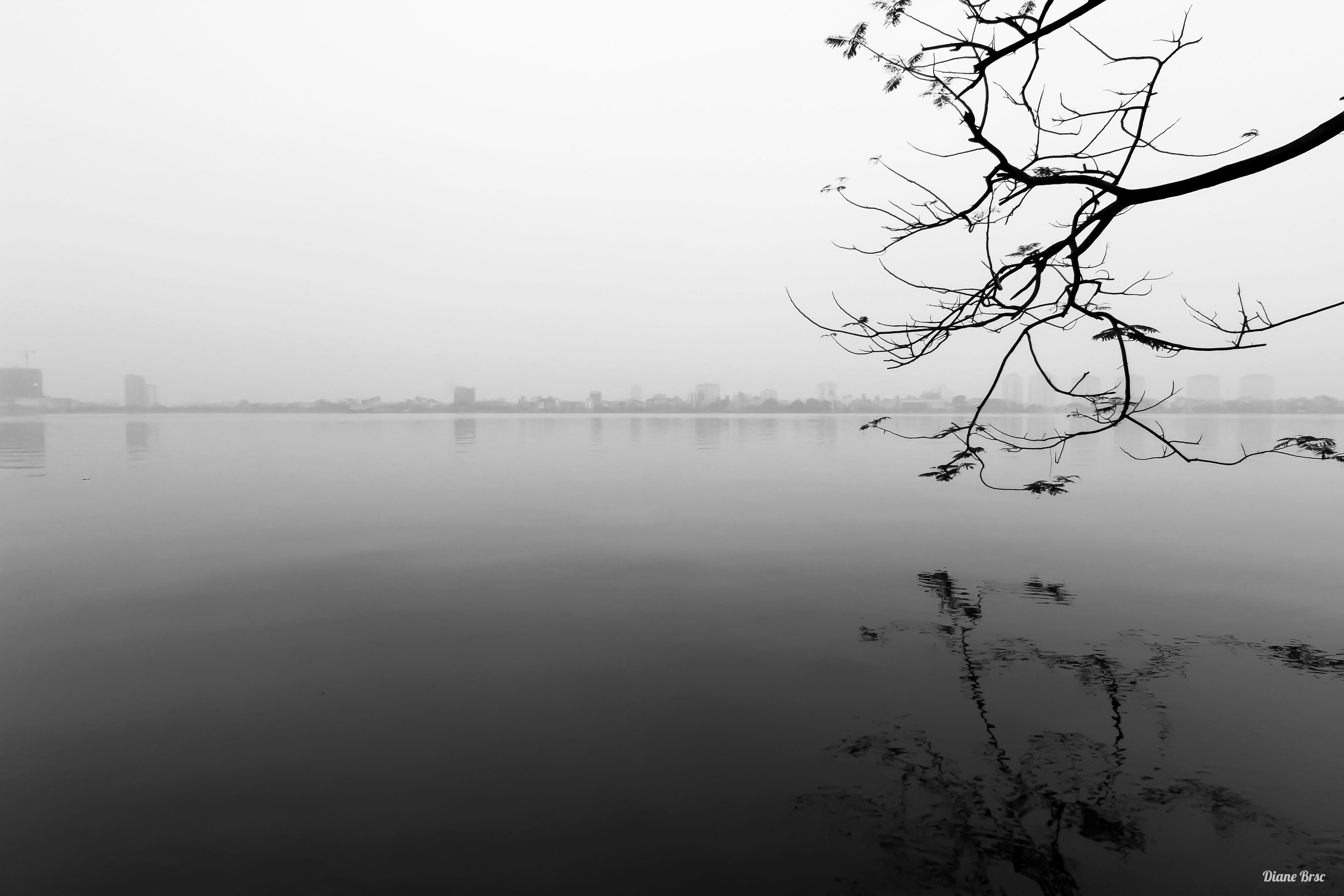 Cloudy Tây Hồ