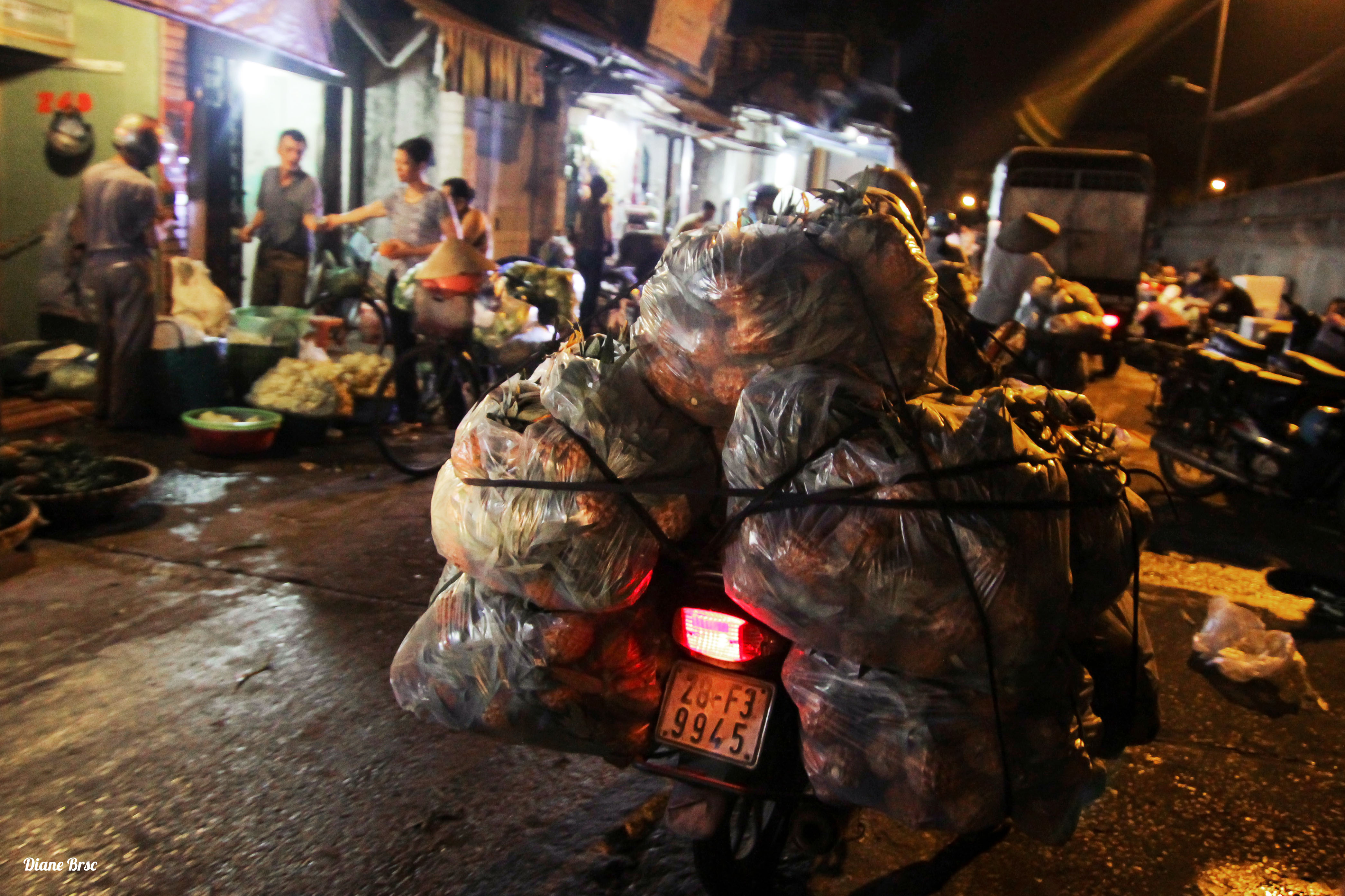 Long Bien Night Market