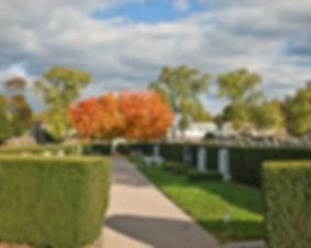 Rebeccas-Garden.jpg