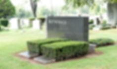 Landscape page - shrubs image-min.jpg