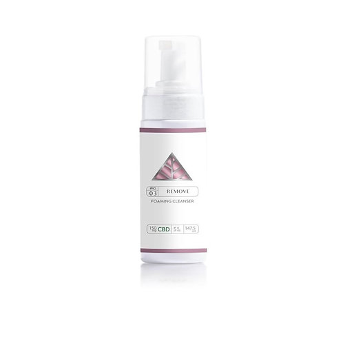 Color Up Foaming Cleanser