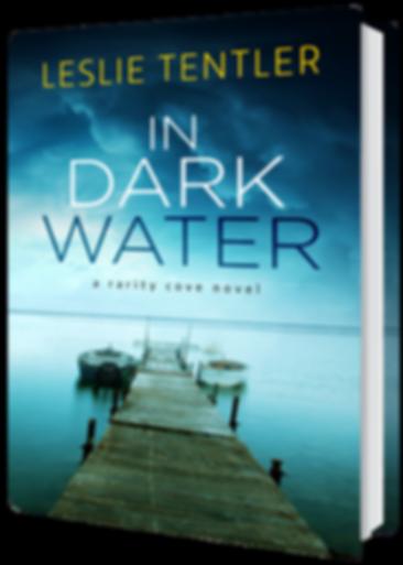 In-Dark-Water.png