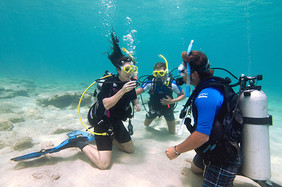 Divemaster Scuba Diving Training St. Thomas VI
