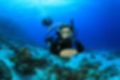 PADI Open Water Course Div St. Thomas  Scuba Diving