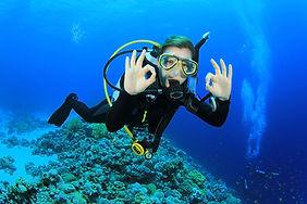 2 Tank Scuba Diving in St. Thomas US Virgin Islands