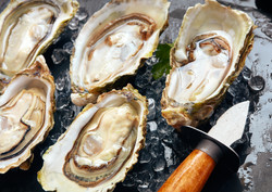 set-of-opened-oysters-8DX56HE (1)