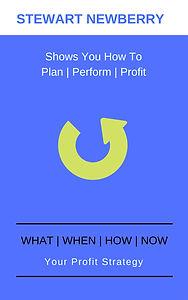 WWHN Plan E-BOOK.jpg