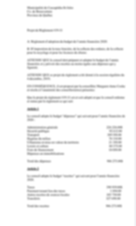budget by-law Project- 2020 fre.p.png