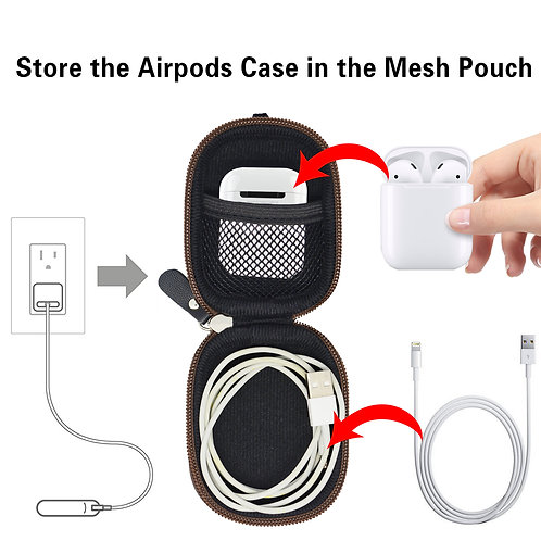 Earbud Protective Case (Black/Brown)
