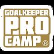 2021_GOALKEEPER_PROCAMP_GOLD.png