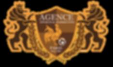 2020_newlogo_agencesportsmarketing.png