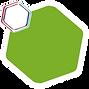 hexagone_vert.png