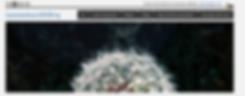 Screenshot_2020-03-22 Coronavirus COVID-